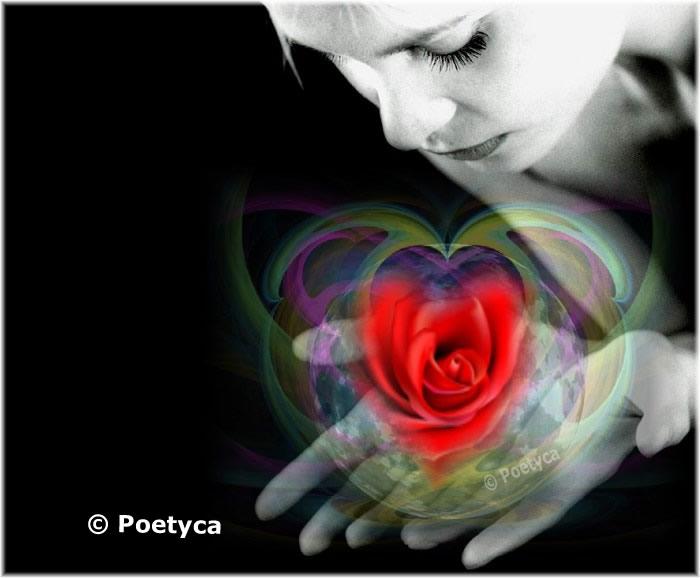 cuorefiorito1