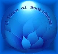 Il fiore di Bodhidharma