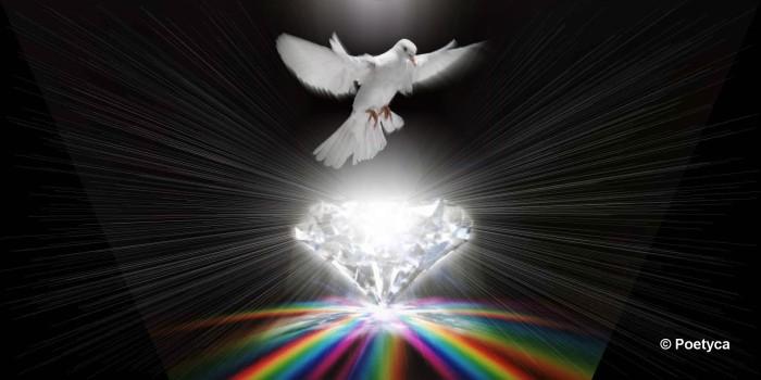 Nove sutra sulla pace
