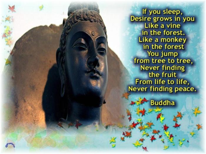 buddha39