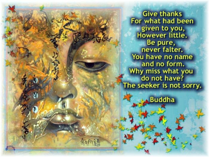 buddha40