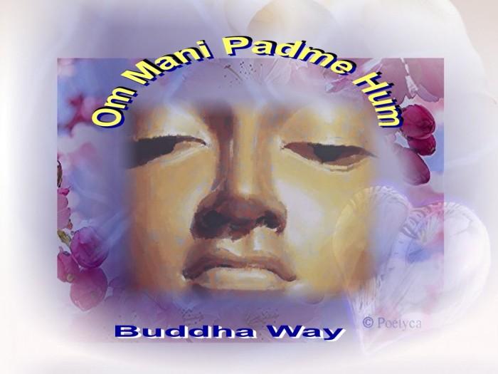 buddhaway