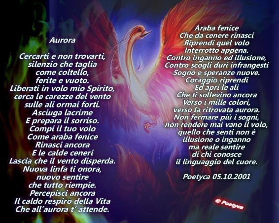 Aurora Tavolozza Di Vita