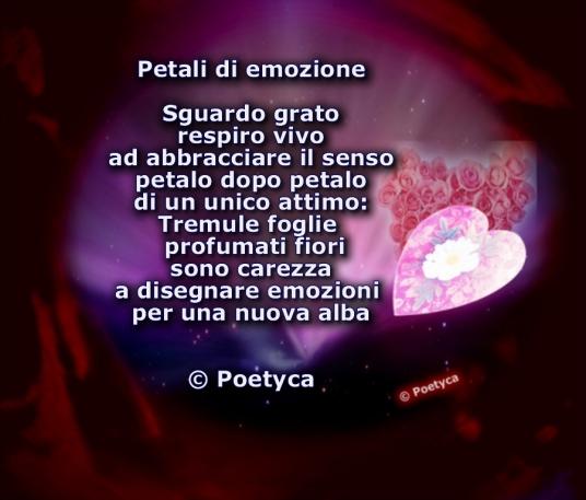 petali di emozione tavolozza di vita