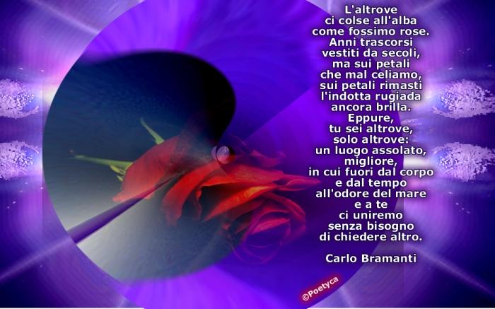 carlobramanti5
