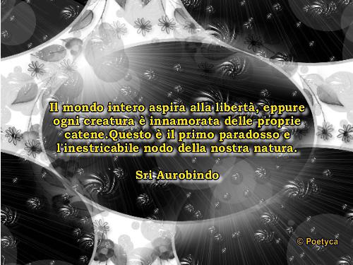 aurobindo3