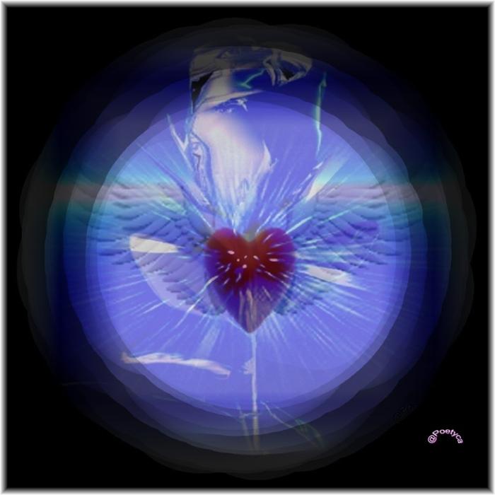 Una perla al giorno - Djalâl-ud-Din Rûmî