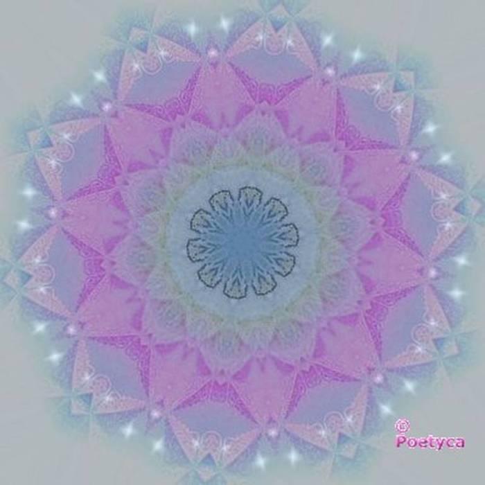 Una perla al giorno - Detto arabo