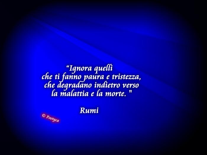 rumi14
