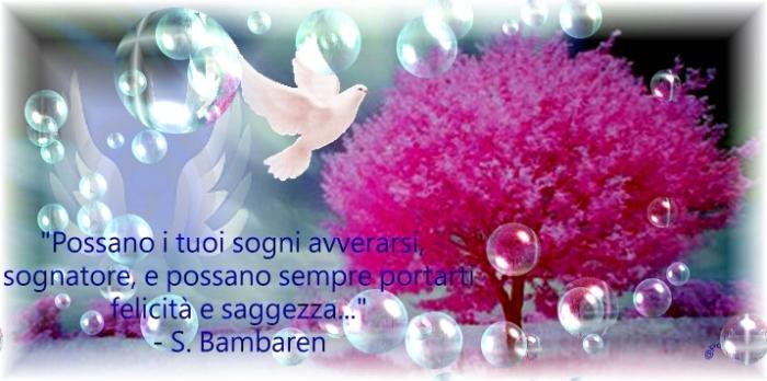 sognibambaren (3)