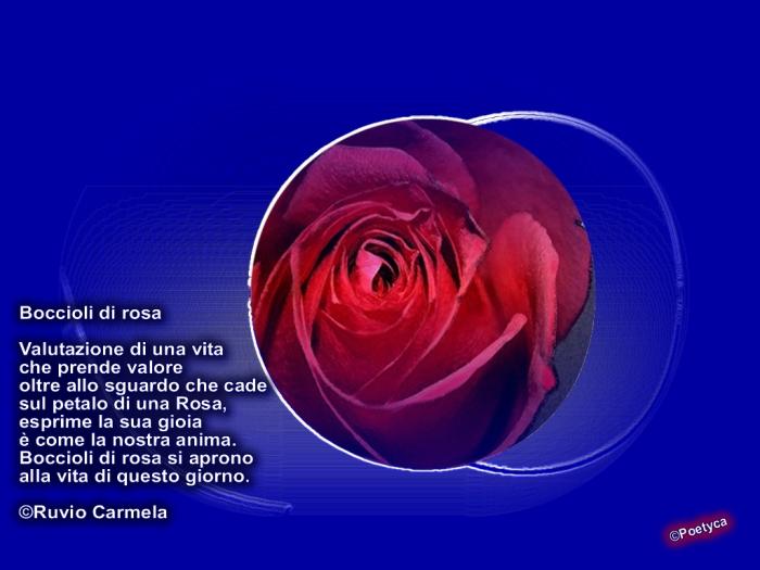 carmela11